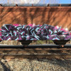 Donor / Boston / Freights