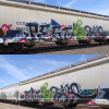 Pest, tabs / Seattle / Freights