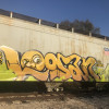starve / Tampa / Freights