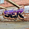 STER / Providence / Walls