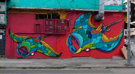 Insano / Panama City / Street Art