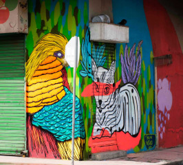 Insano & Balan / Panama City / Street Art