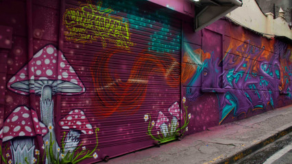Caso3 / Panama City / Walls