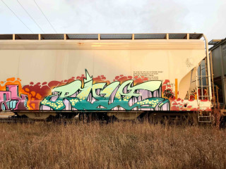 Rove / Freights