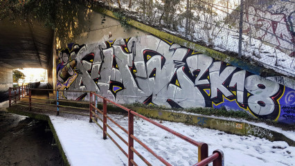 SKWER / Paris, FR / Walls